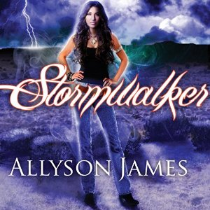 Stormwalker audiobook by Jennifer Ashley & Allyson James